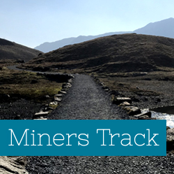 Miners Track